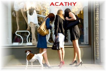 Les sacs en cuir d'Acathy